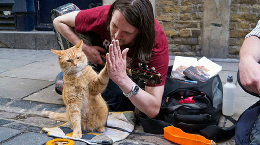 James bowen and street cat bob london