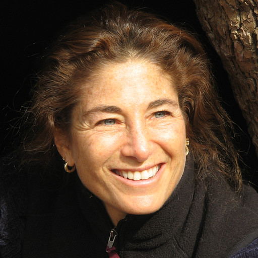 Meditation: Continuous Space Suffused with Awareness (2021-02-24), Tara Brach