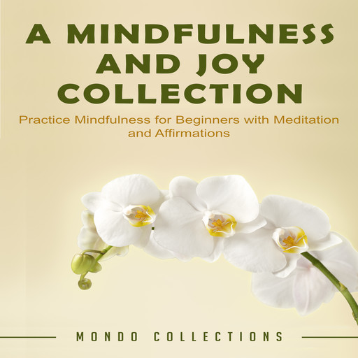 A Mindfulness and Joy Collection: Practice Mindfulness for Beginners with Meditation and Affirmations, Mondo Collections