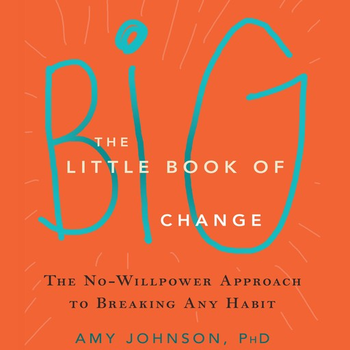 The Little Book of Big Change, Amy Johnson