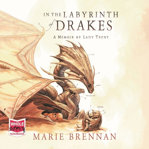In the Labyrinth of Drakes, Marie Brennan