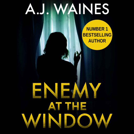 Enemy At The Window, A.J. Waines