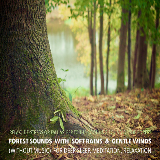 Forest Sounds with Soft Rains & Gentle Winds (without music) for Deep Sleep, Meditation, Relaxation, Yella A. Deeken