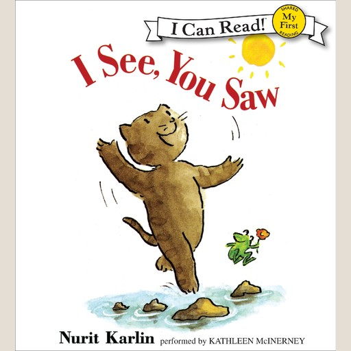 I See, You Saw, Nurit Karlin