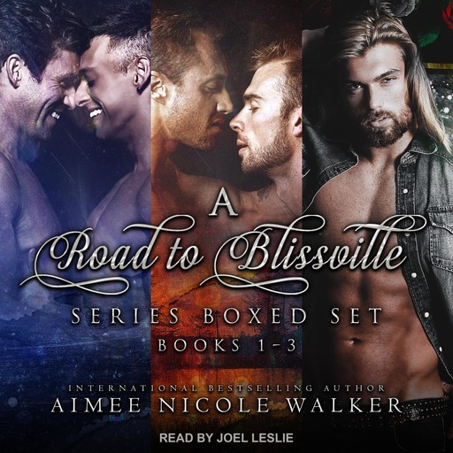 Road to Blissville Series Boxed Set, Aimee Nicole Walker