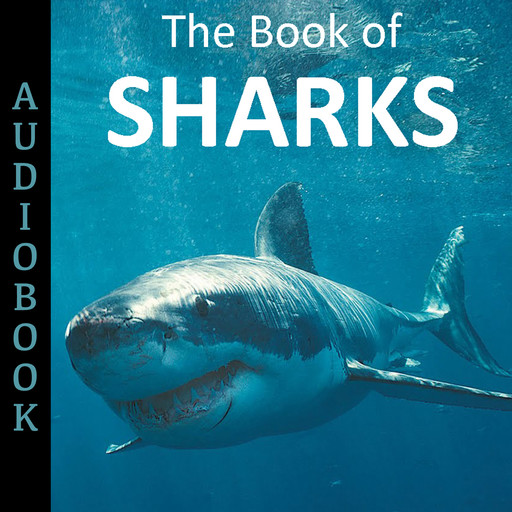 The Book of Sharks, My Ebook Publishing House