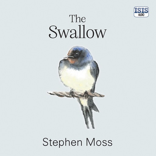 The Swallow, Stephen Moss
