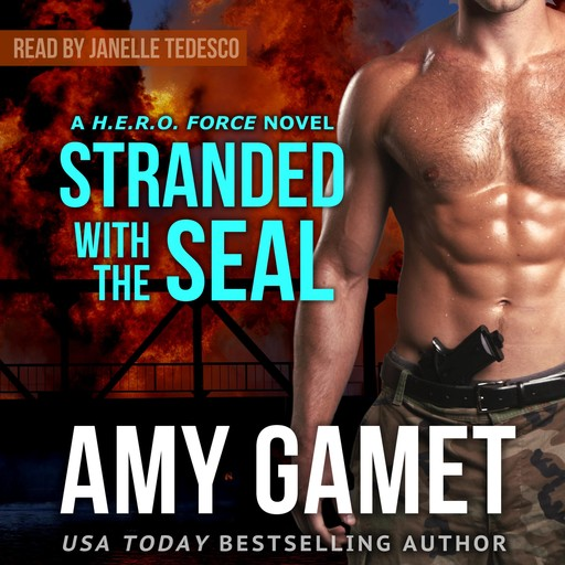 Stranded with the SEAL, Amy Gamet