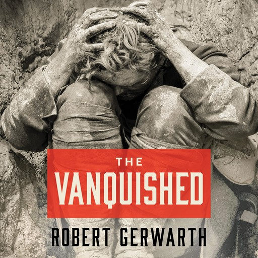 The Vanquished, Robert Gerwarth