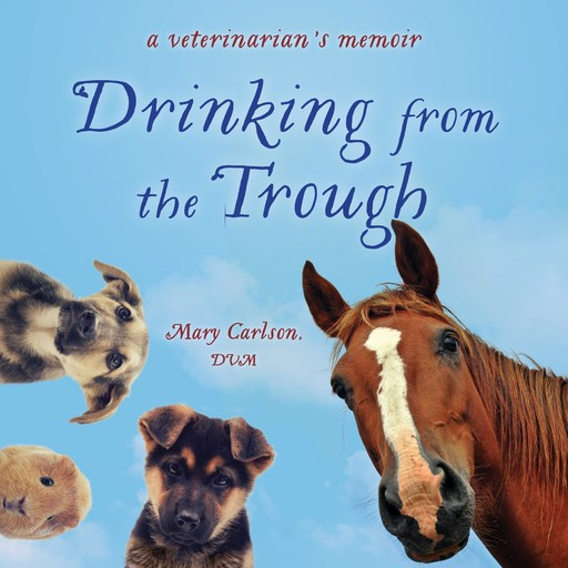 Drinking from the Trough, DVM, Mary Carlson
