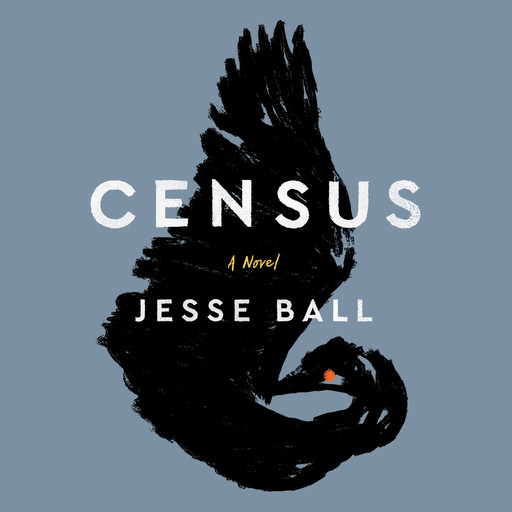 Census, Jesse Ball
