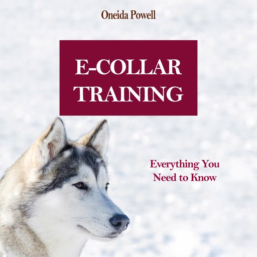 E-COLLAR TRAINING: Everything You Need to Know, Oneida Powell