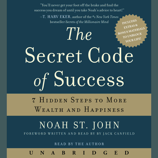 The Secret Code of Success, Noah St. John