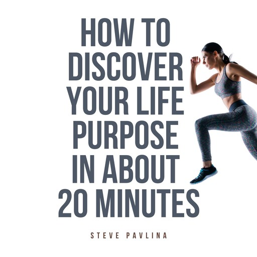 How to Discover Your Life Purpose in About 20 Minutes, Steve Pavlina