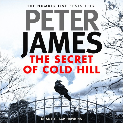 The Secret of Cold Hill, Peter James