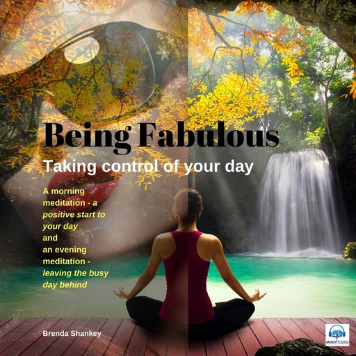 Taking Control of your Day: Be Fabulous, Brenda Shankey