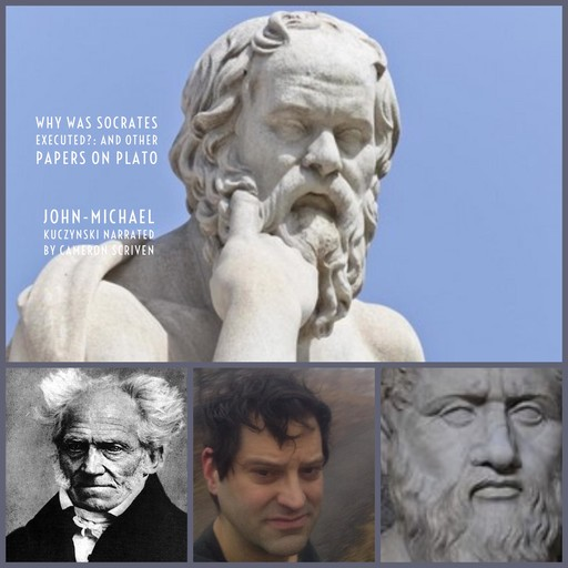 Why Was Socrates Executed?: And Other Papers on Plato, J. -M. Kuczynski