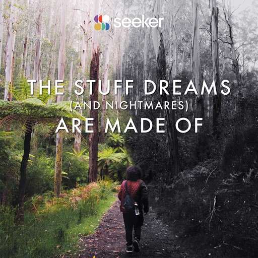 The Stuff Dreams (And Nightmares) Are Made Of, Seeker