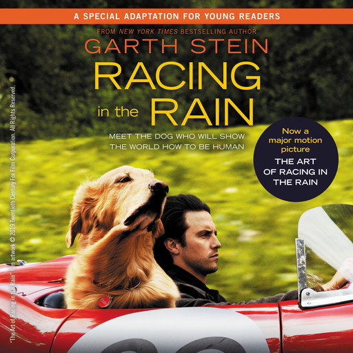 Racing in the Rain, Garth Stein