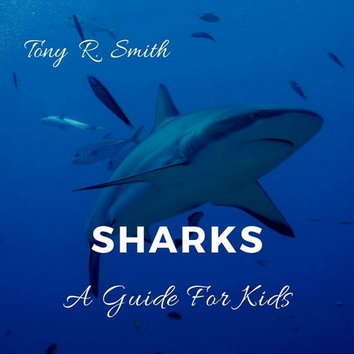 Sharks: A Guide for Kids, Tony Smith