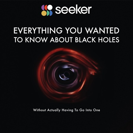 Everything You Wanted to Know About Black Holes, Seeker