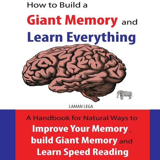How to Build a Giant Memory and Learn Everything, Hayden Kan