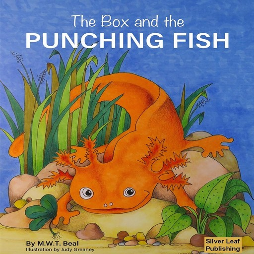 The Box and the Punching Fish, MarkW.T. Beal