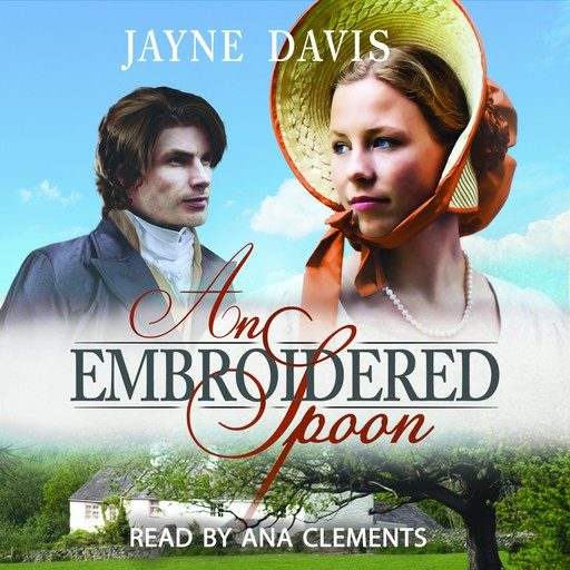 An Embroidered Spoon, Jayne Davis