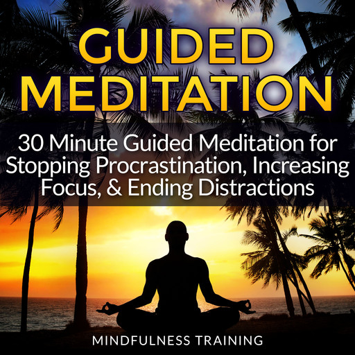 Guided Meditation: 30 Minute Guided Meditation for Stopping Procrastination, Increasing Focus, & Ending Distractions (Deep Sleep Self Hypnosis, Law of Attraction Affirmations, Anxiety & Stress Relief, Guided Imagery & Relaxation Techniques), Mindfulness Training