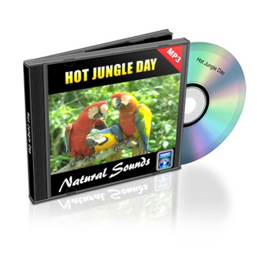 Hot Jungle Day - Relaxation Music and Sounds, Empowered Living