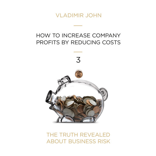 How to increase company profits by reducing costs, Vladimir John