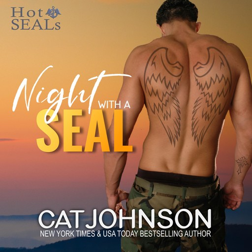 Night with a SEAL, Cat Johnson