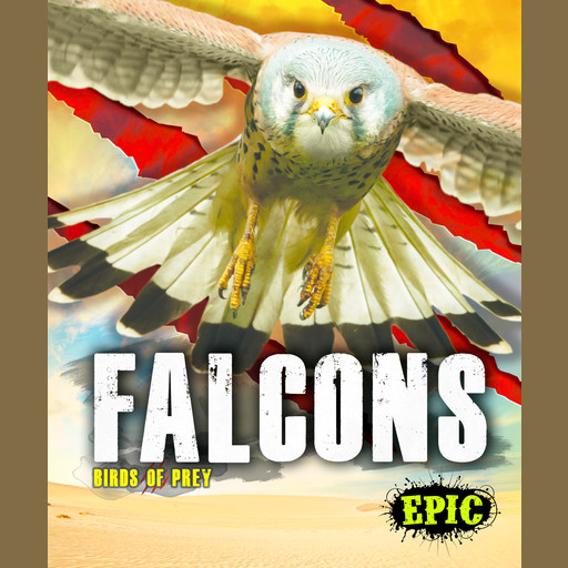 Falcons, Nathan Sommer