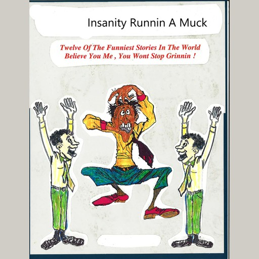 Insanity Running A Muck, James M. Spears