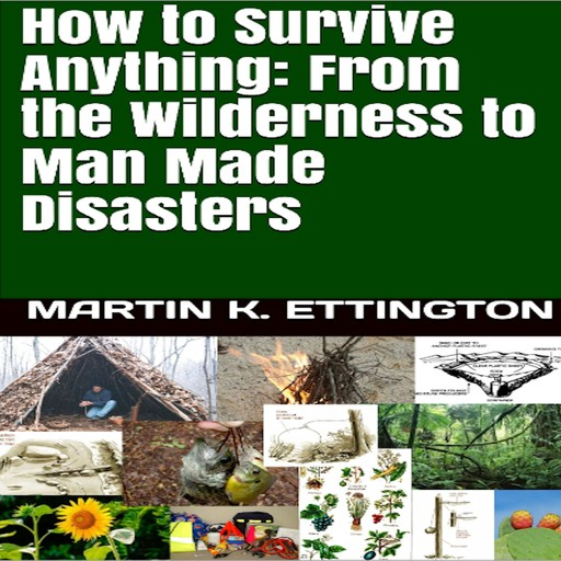 How to Survive Anything From the Wilderness to Man Made Disasters, Martin K. Ettington