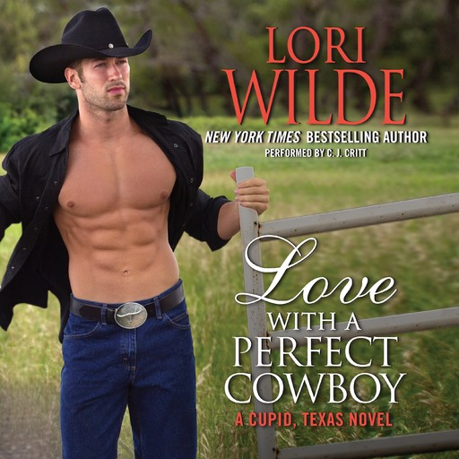Love With a Perfect Cowboy, Lori Wilde