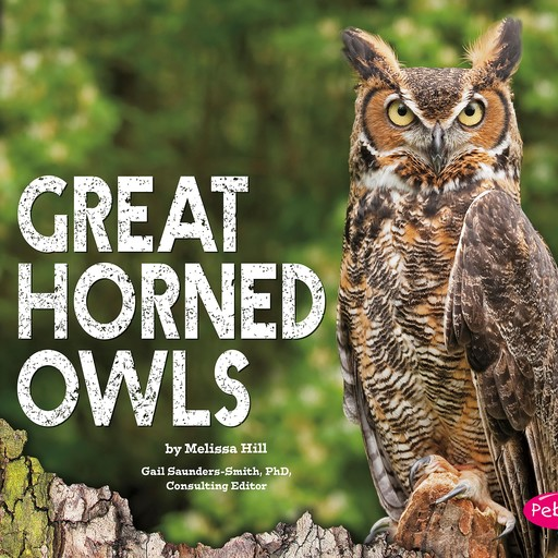 Great Horned Owls, Melissa Hill