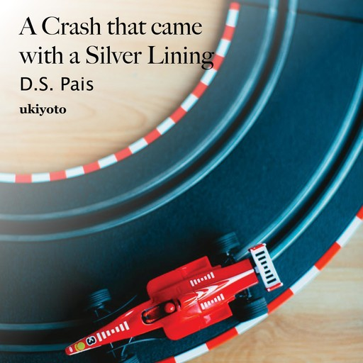 A Crash that came with a Silver Lining, D.S. Pais