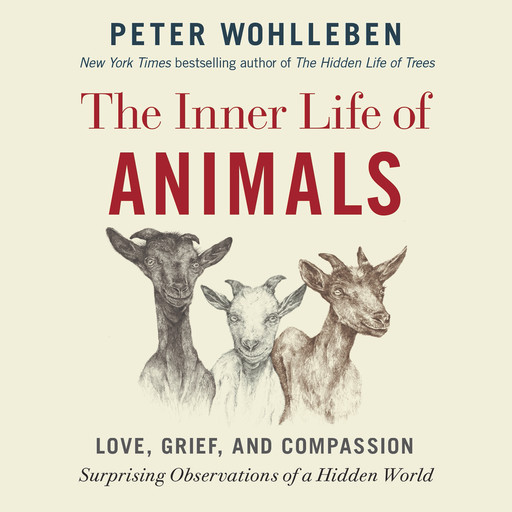 The Inner Life of Animals: Love, Grief, and Compassion -- Surprising Observations of a Hidden World, Peter Wohlleben, Foreword by Jeffrey Moussaieff Masson, Translation by Jane Billinghurst