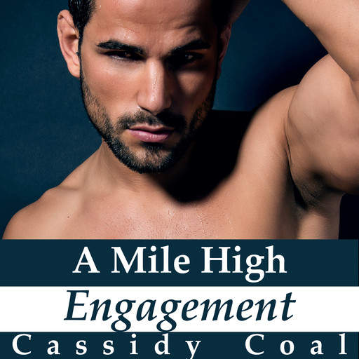 A Mile High Engagement (A Mile High Romance Book 6), Cassidy Coal