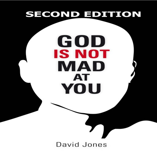 God Is Not Mad At You: 2nd Edition, David Jones