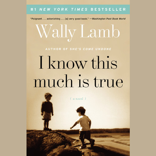 I Know This Much Is True, Wally Lamb