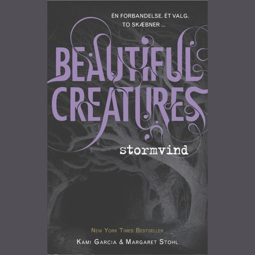 Beautiful Creatures 1 - Stormvind, Kami Garcia, Margaret Stohl