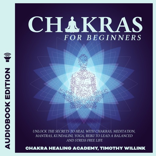 Chakras for Beginners, Timothy Willink