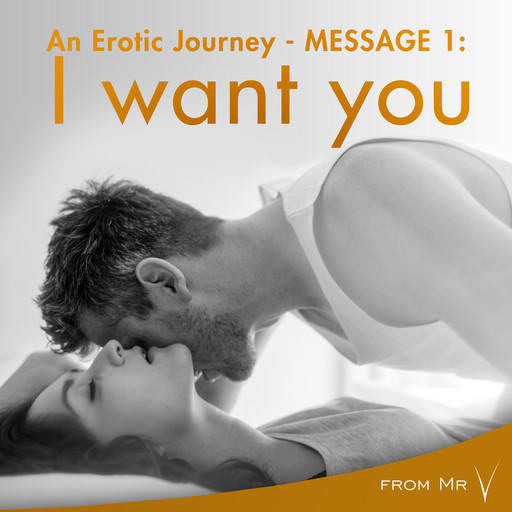 An Erotic Journey, Message 1: I want you, fromV