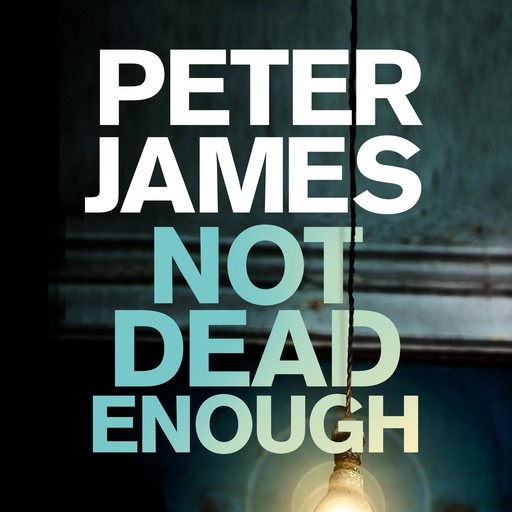 Not Dead Enough, Peter James