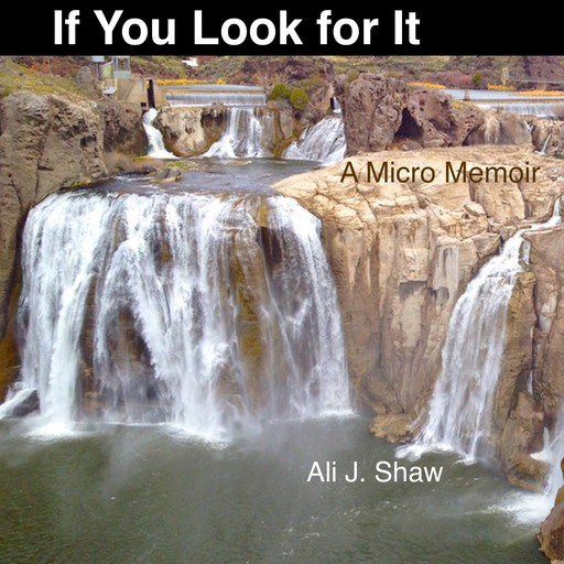 If You Look for It: A Micro Memoir, Ali Shaw