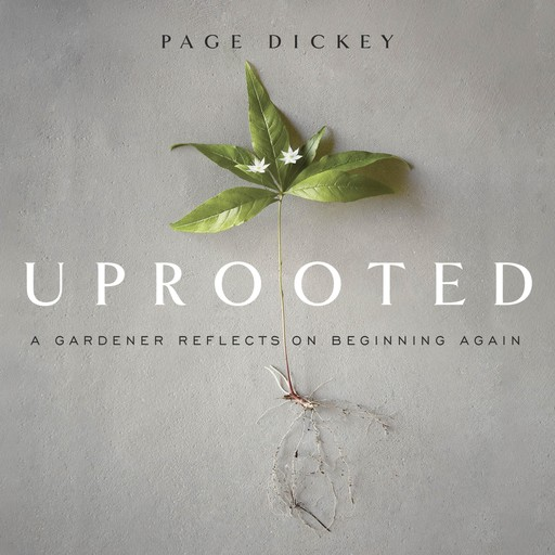 Uprooted, Page Dickey