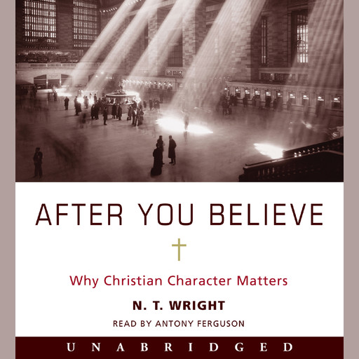 After You Believe, N.T.Wright