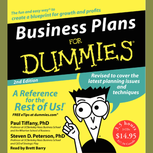Business Plans for Dummies 2nd Ed., Paul Tiffany, Steven Peterson